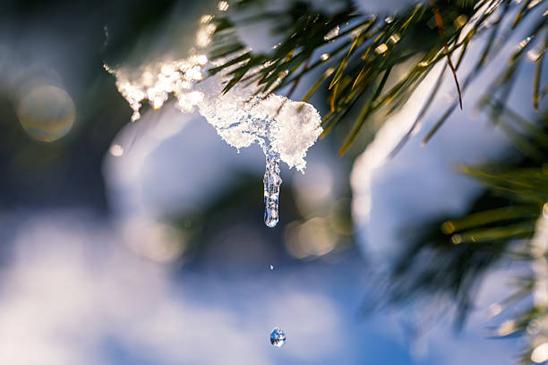 liquiditeitsprognose - laat je CASH niet smelten als sneeuw voor de zon